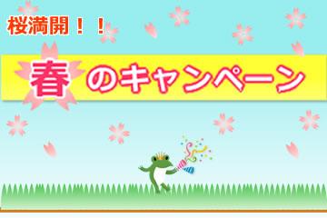 桜満開!春のキャンペーンローンファンド8号